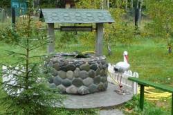 Декор скважины под колодец