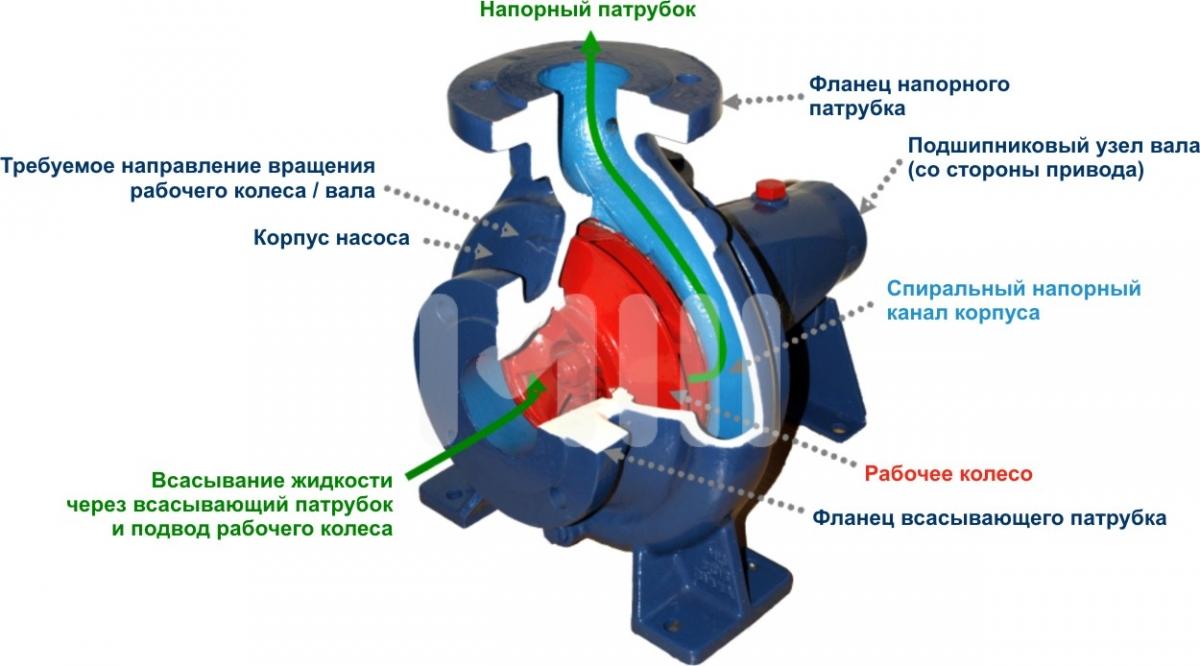 схема водяной помпы