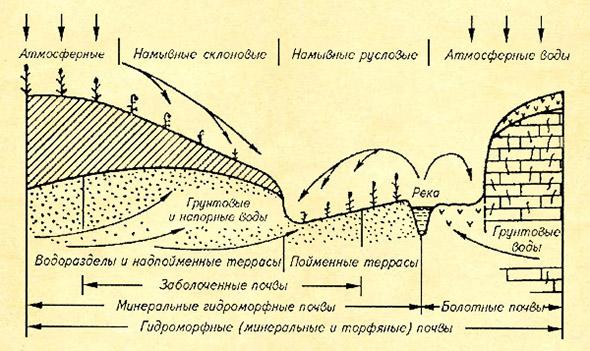 Схема верховодки